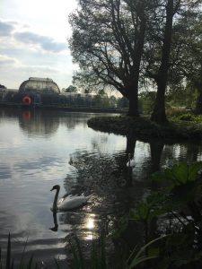 Kew Gardens, Kraliyet Botanik Bahçeleri